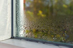 a humid home collecting moisture on a window